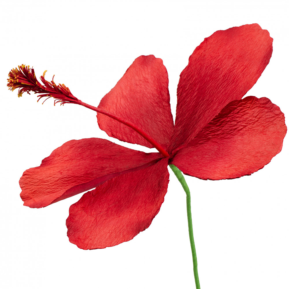 20 Giant Hibiscus Paper Flower Stem Red 245090 Craftoutlet