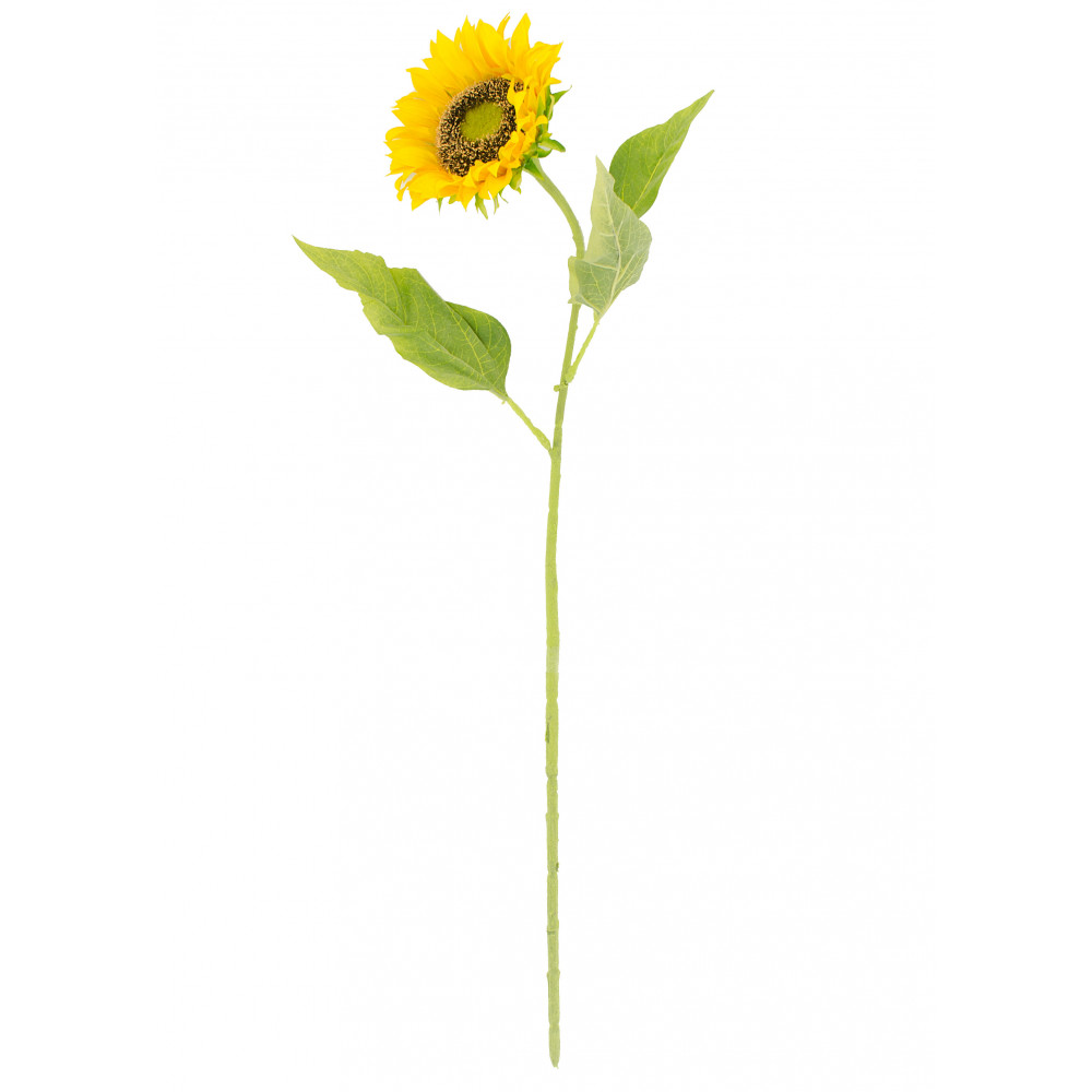 """ single sunflower stem yellow [yw]  craftoutlet, Beautiful flower"