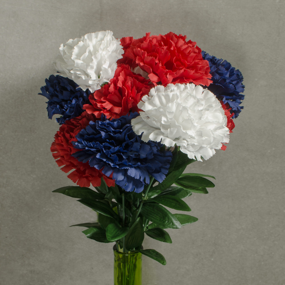 20 color fast carnation bush 14 red white blue 314228rwb 20 color fast carnation bush 14 red white blue izmirmasajfo Gallery