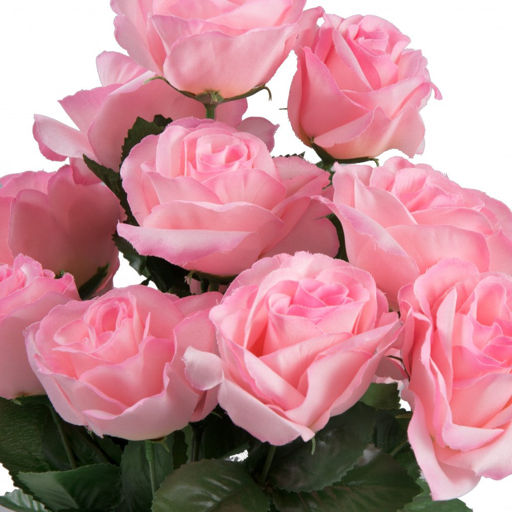"""17"""" Color Fast Lillian Open Rose Bush: Baby Pink ..."""