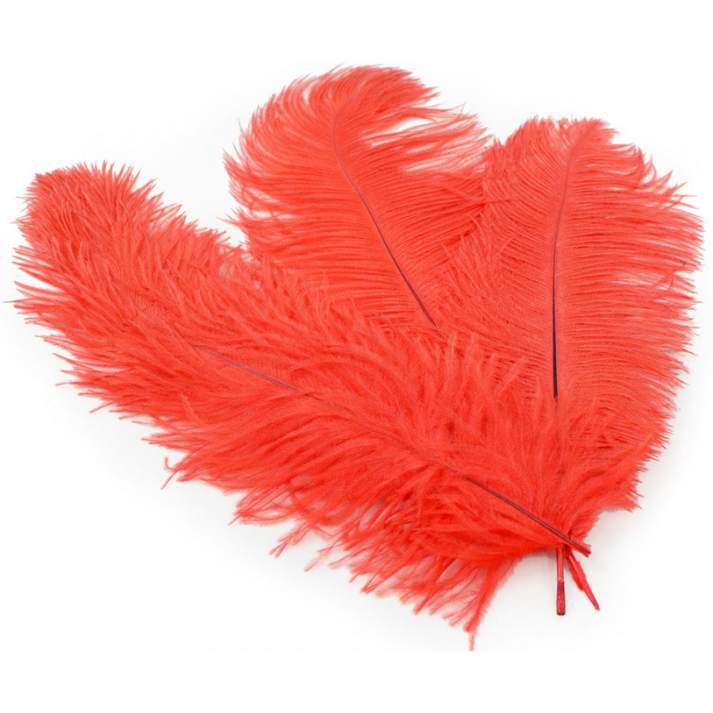 10 to 12-Inch Touch of Nature 38171 Indian Feather Red