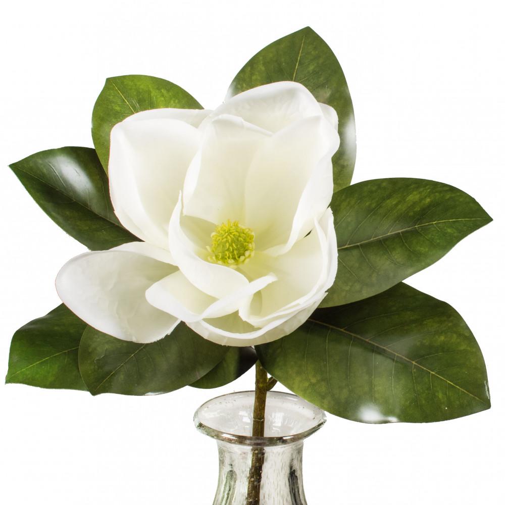17 Magnolia Flower Stem Fs3356 Craftoutlet
