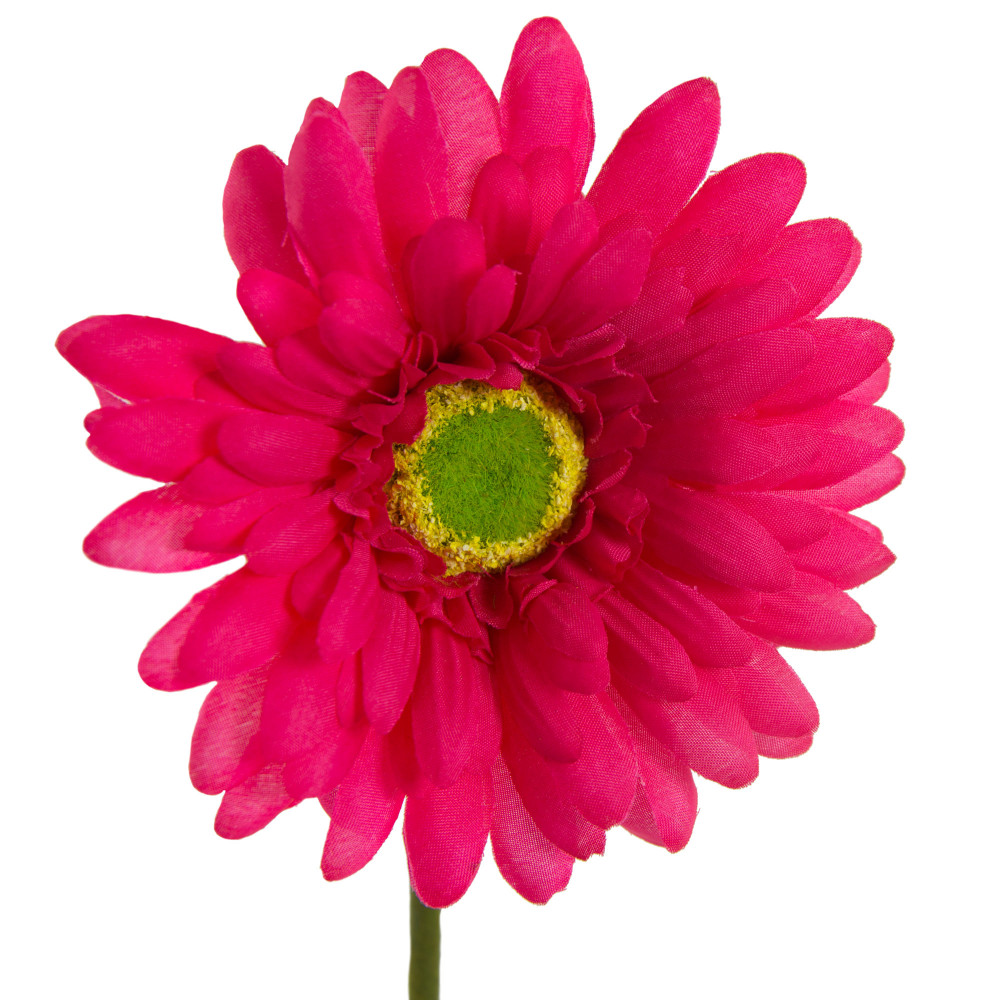 18 Gerbera Daisy Stem Hot Pink 20168bt Craftoutlet
