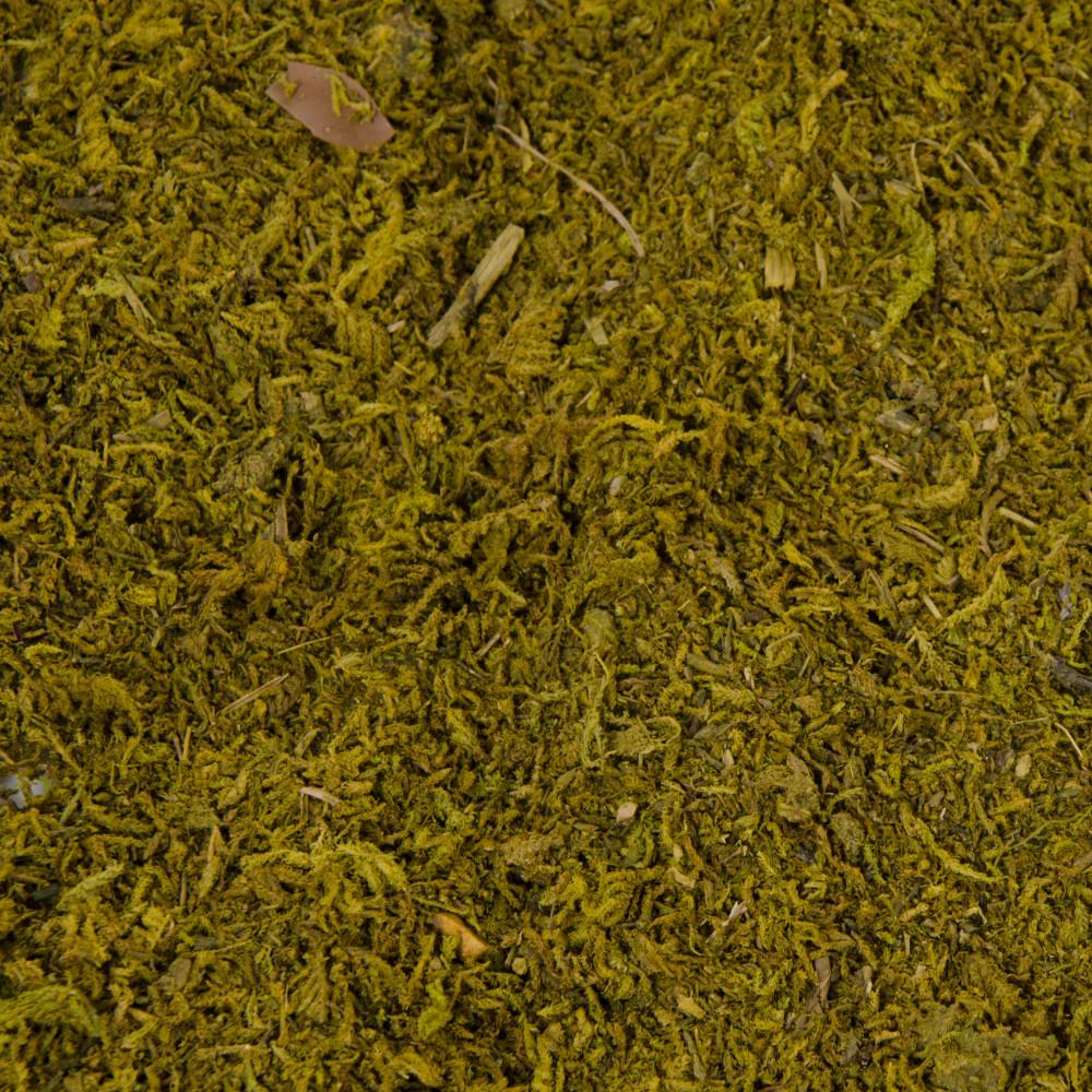 """14"""" Green Sheet Moss Mat (Set Of 2) [TT662809"""